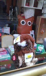 Owlie store window pic 2