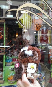 Owlie store window pic 3