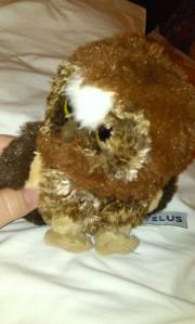 Owlie talking stick