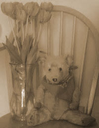 teddy bear and vase of flowers on a chair