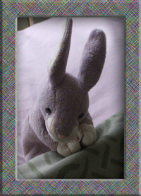 purple stuffed rabbit