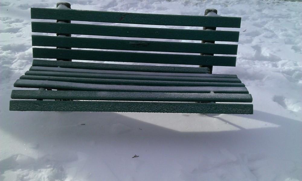 1 park bench, 2 trees, 4 seasons (5/6)