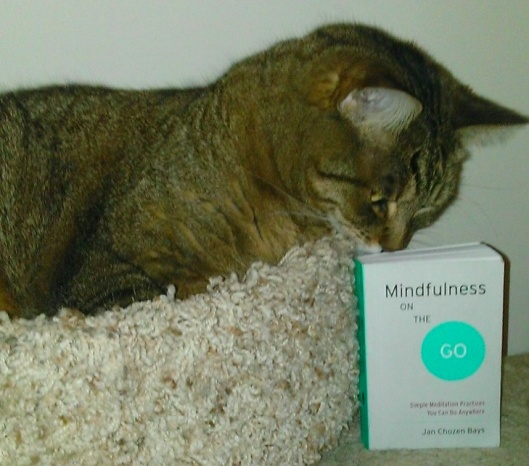 Mindfulness on the Go book and tabby cat