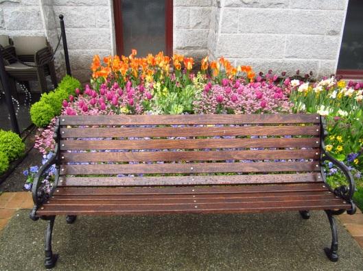 A wet park bench